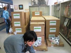 職員室の前に小学校毎に積んだ笑顔袋のダンボール